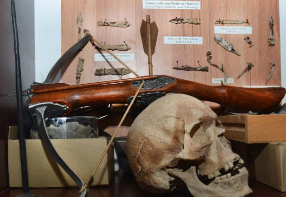 czaszka i broń, zbiory znajdujące się w Muzeum Ziemi Choszczeńskiej